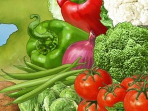 Dave OConnell, Food, Vegetables, Illustration