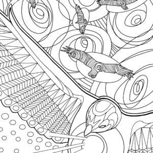 Dave OConnell, Birds, Line art