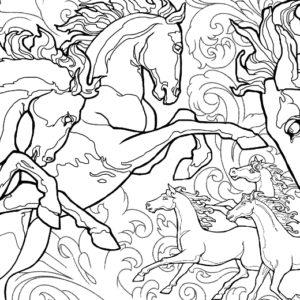 Dave OConnell, Horses, Line Art